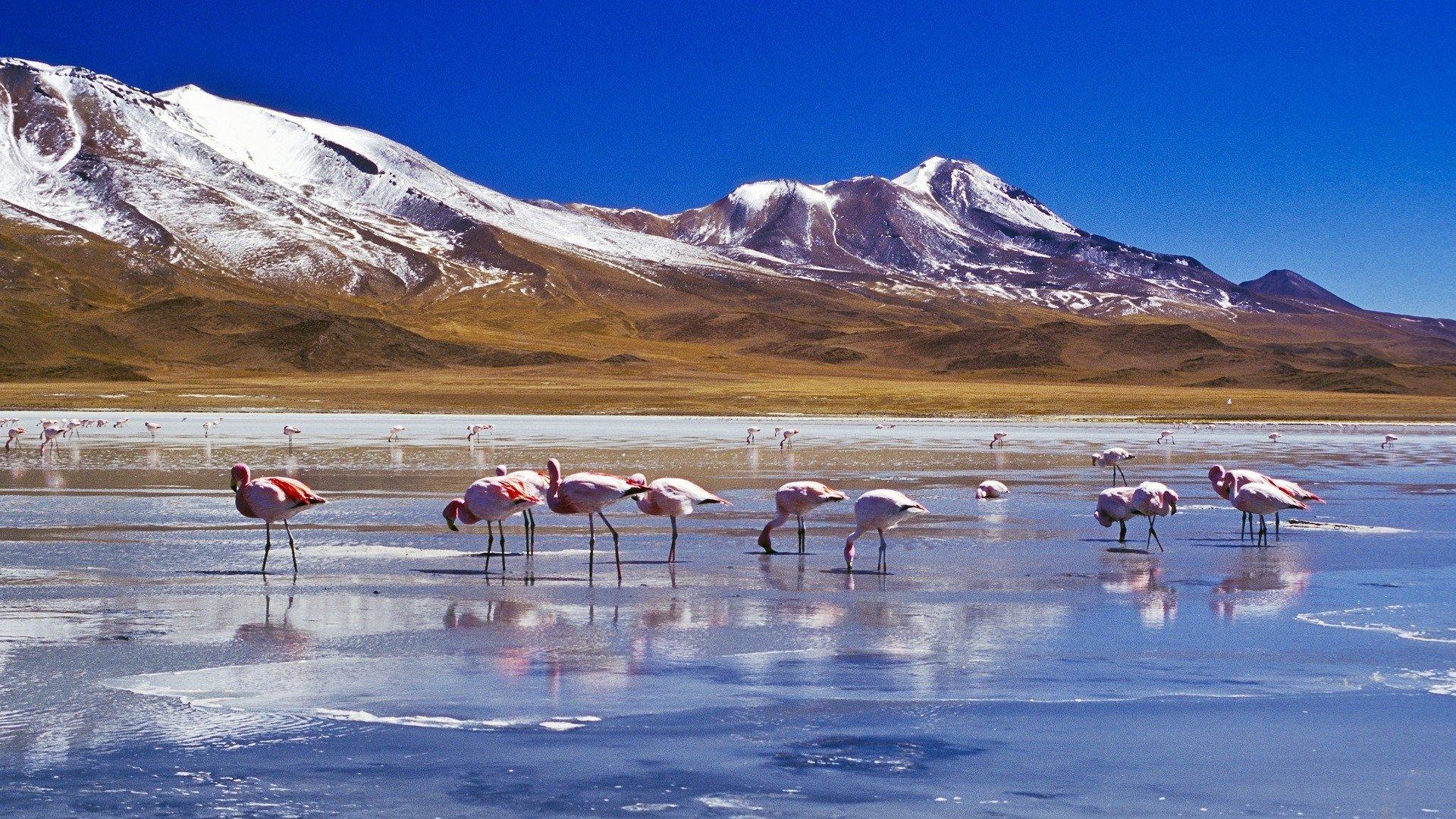 The Salar de Uyuni salt flats in Bolivia HD Wallpaper Background 1920x1080
