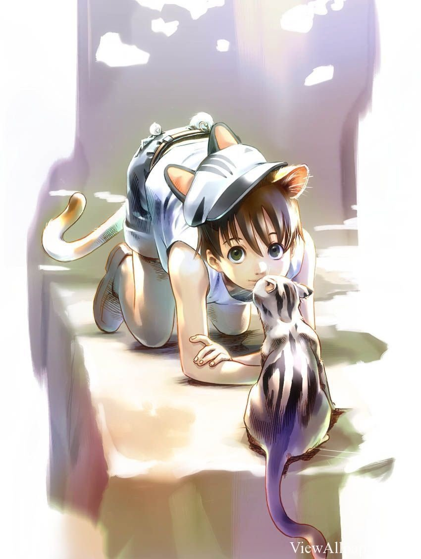 Anime Cute Cat Wallpaper High Resolution download Anime Cute Cat 850x1129