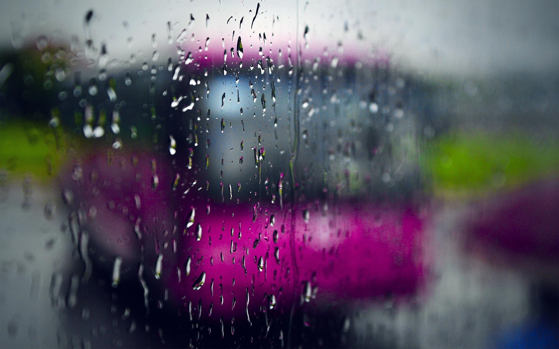 the rain rain forest images rain at beach screensavers etc 1920x1200