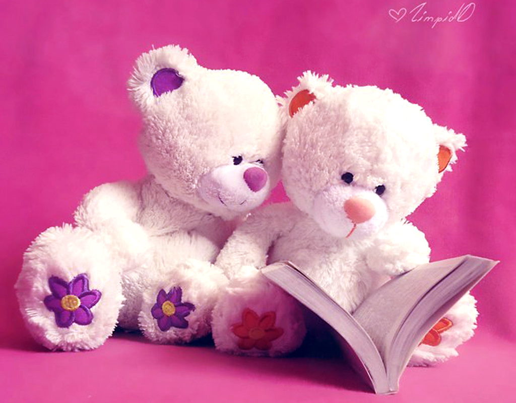 Free Download 25 Romantic Teddy Bear Wallpapers 1024x800