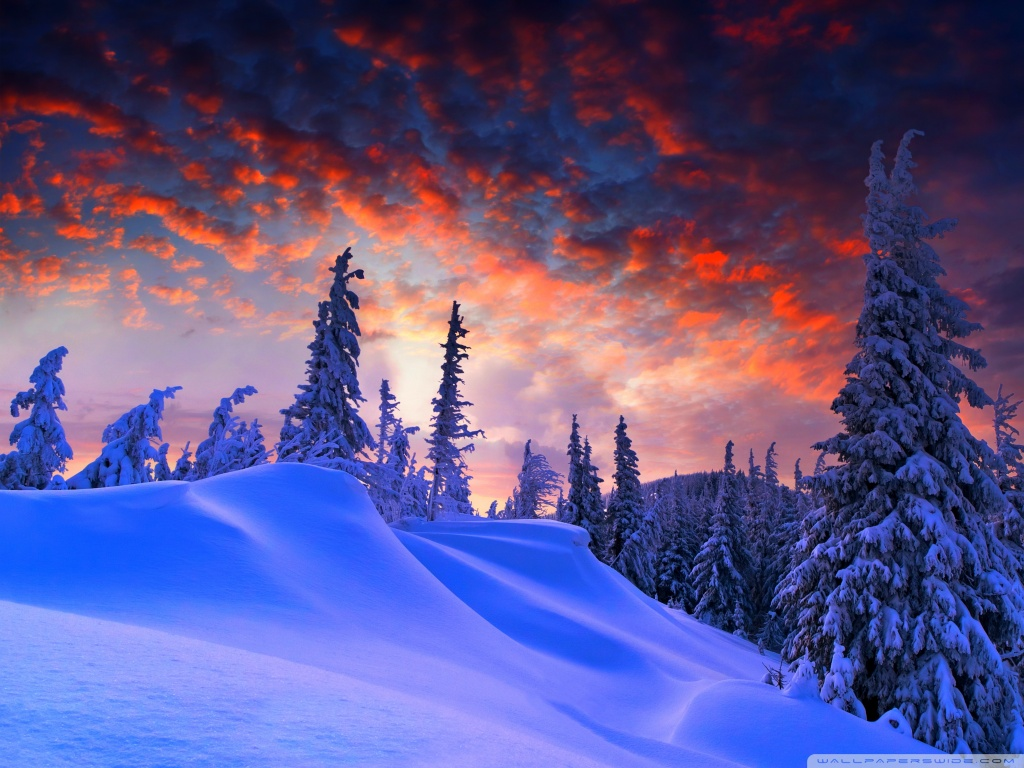 Winter Christmas 4K HD Desktop Wallpaper for 4K Ultra HD TV 1024x768