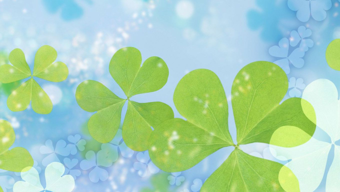 Four Leaf Clover Background wallpaper wallpaper hd 1360x768
