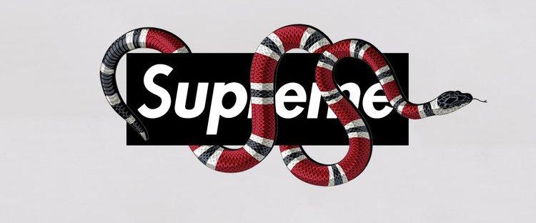 Fashion Week Suprme et Gucci annoncent une 750x312