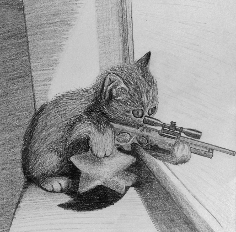 Sniper Cat by mcArnoS 900x882