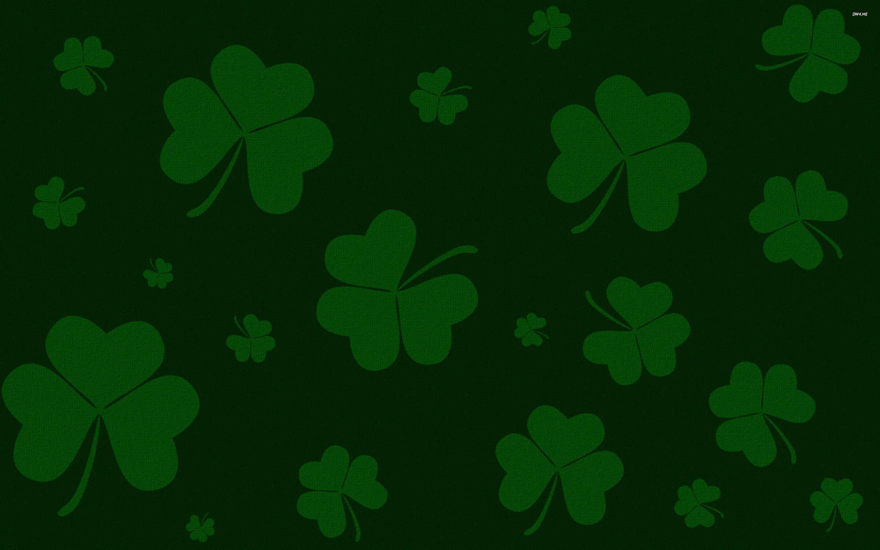 Clovers wallpaper   Holiday wallpapers   2158 2880x1800