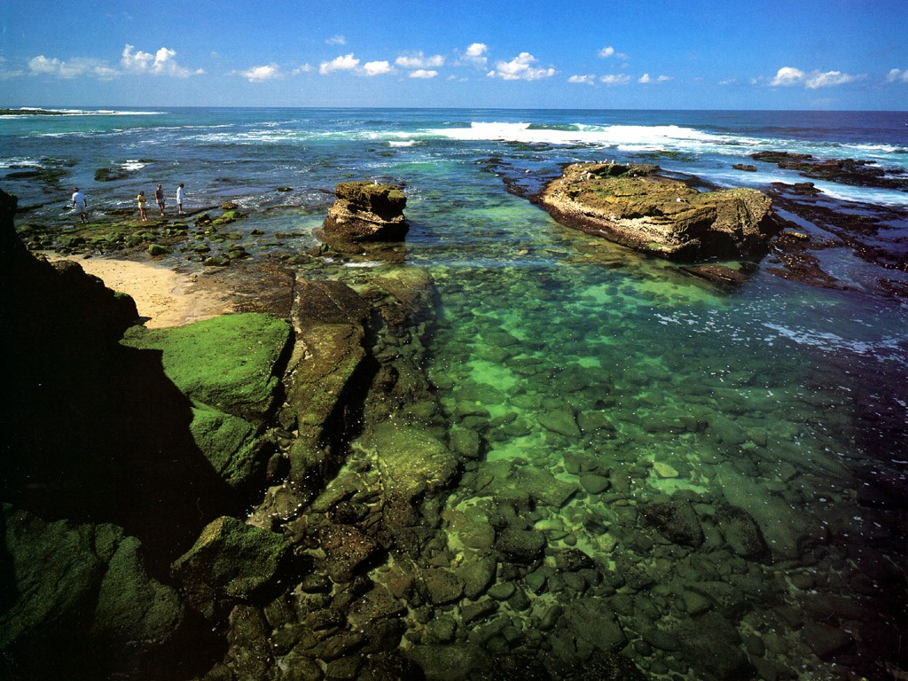wallpaper other oceans and rivers JLM California La Jolla coast Shell 1024x768