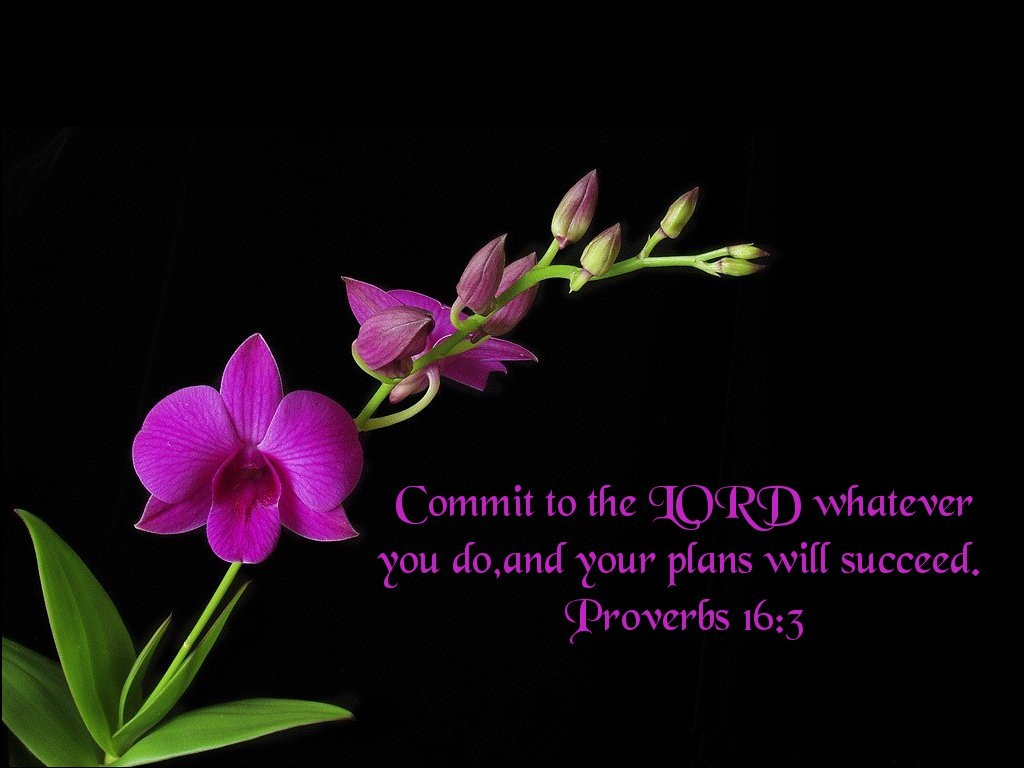Bible Verse Background Wallpapers WIN10 THEMES 1024x768