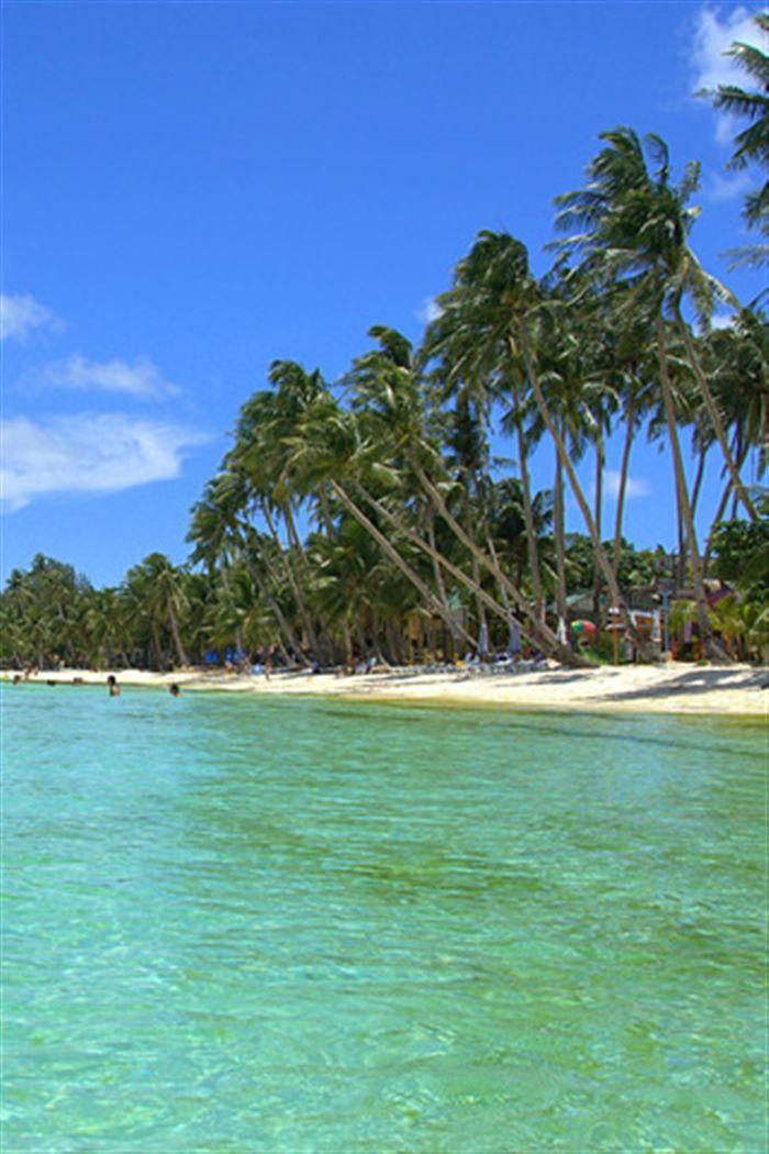 iphone tropical beach wallpaper Photo download Full High resolution 700x1050