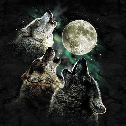 Three Friends Wallpaper