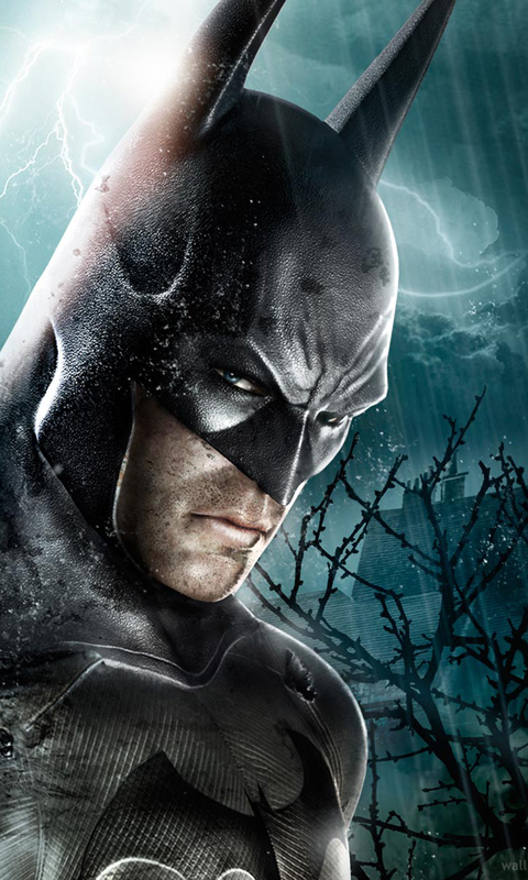 Batman Arkham Asylum Mobile Phone Wallpapers 480x800 Cell Phone Hd 480x800