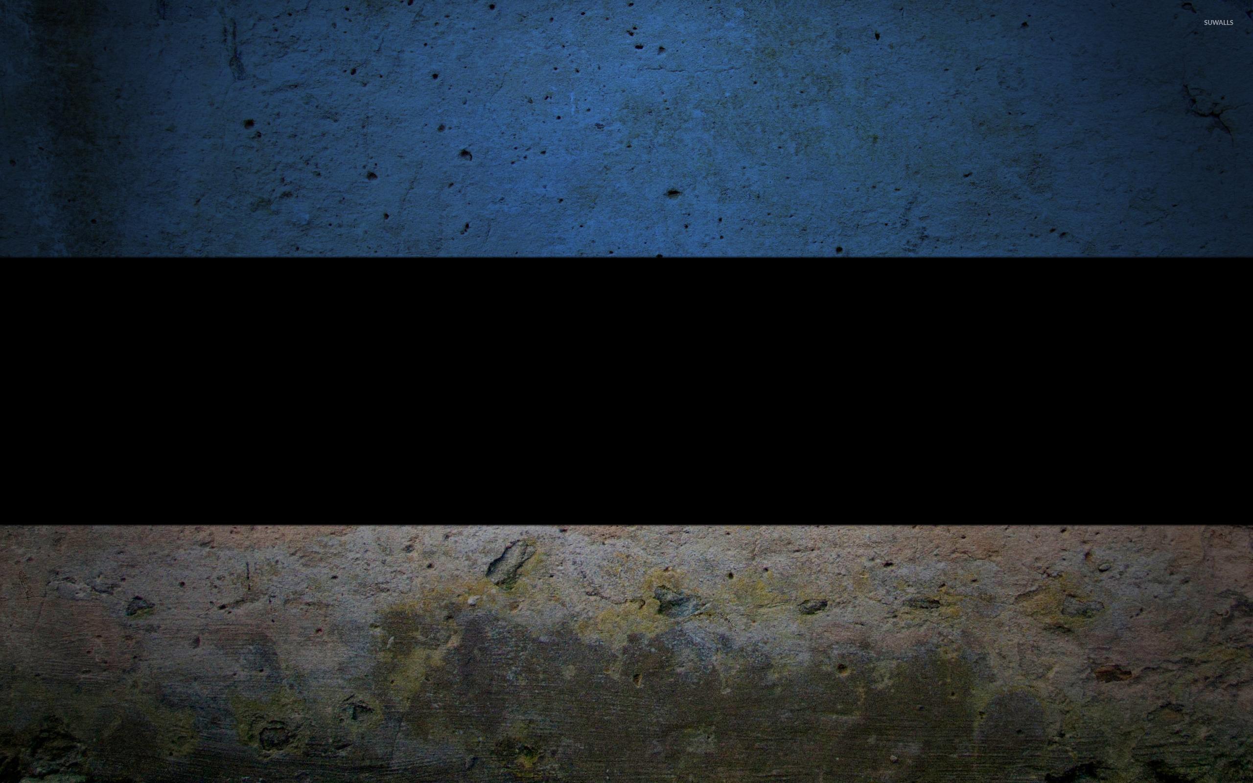 Flag Of Estonia Wallpapers   DodoWallpaper 2560x1600