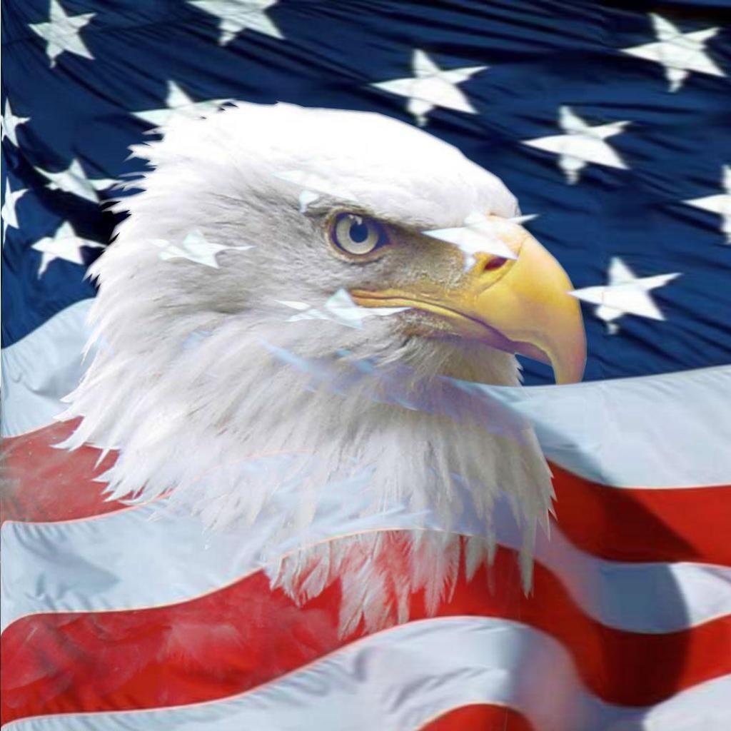Pin by Tina Bear on Wallpaper Bald eagle Us flags Eagle wallpaper 1024x1024