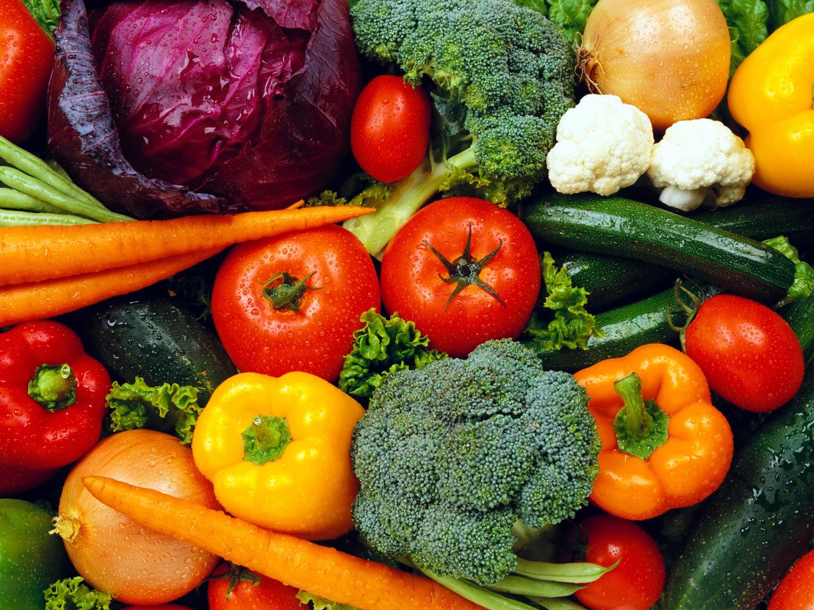 49 Vegetable Gardening Wallpaper On Wallpapersafari
