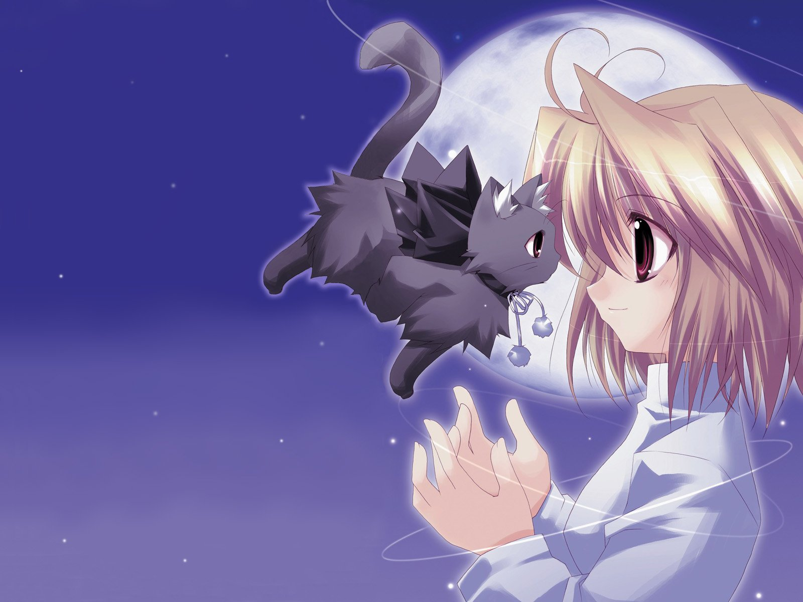 40 cute anime cat wallpaper on wallpapersafari - Anime kitty girl ...