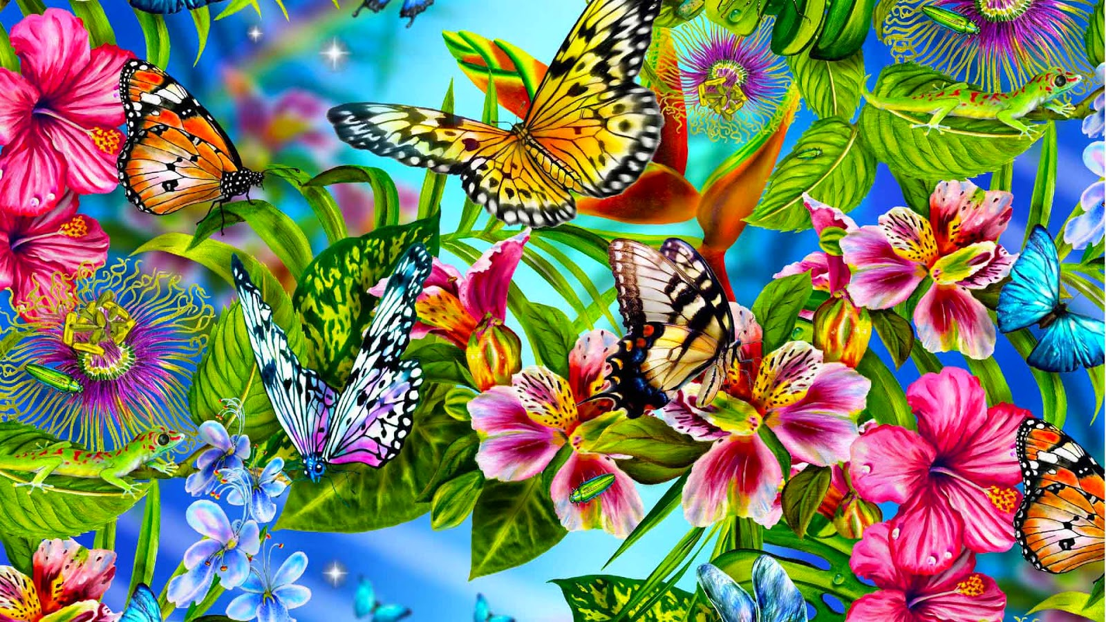 Colorful Butterfly HD Wallpapers Real Artistic 1600x900