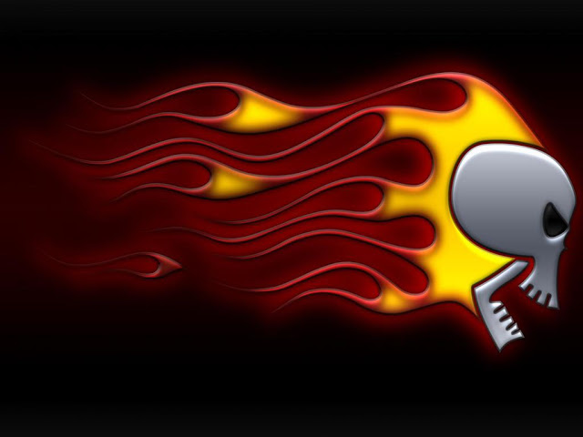 SEENWALL Fire Skull Wallpapers Gallery 640x480