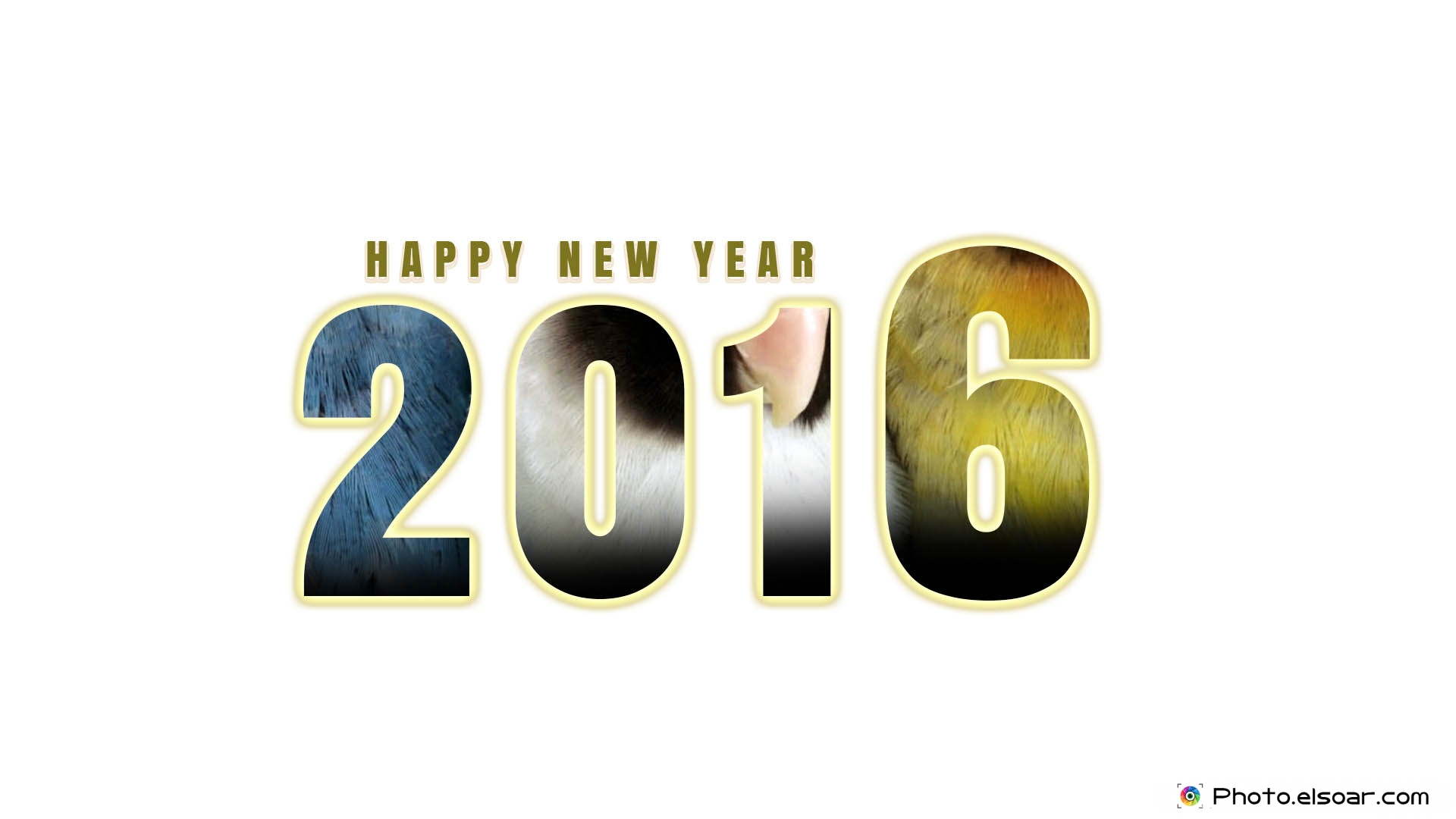 Happy New Year 2016 Images Wallpapers And Greeting Cards 1920x1080