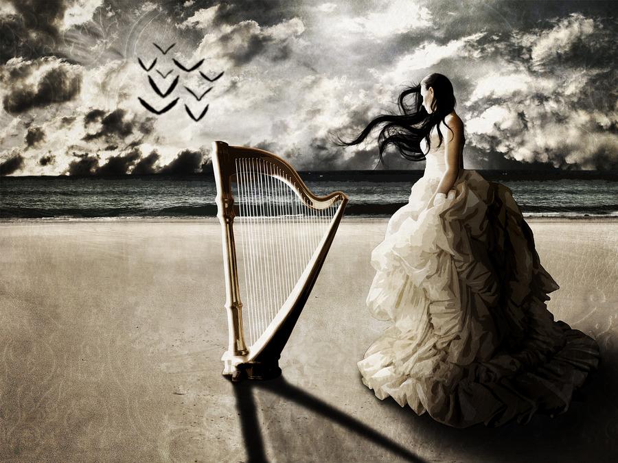 download Harp Wallpapers Wallpaper High Definition High 900x675