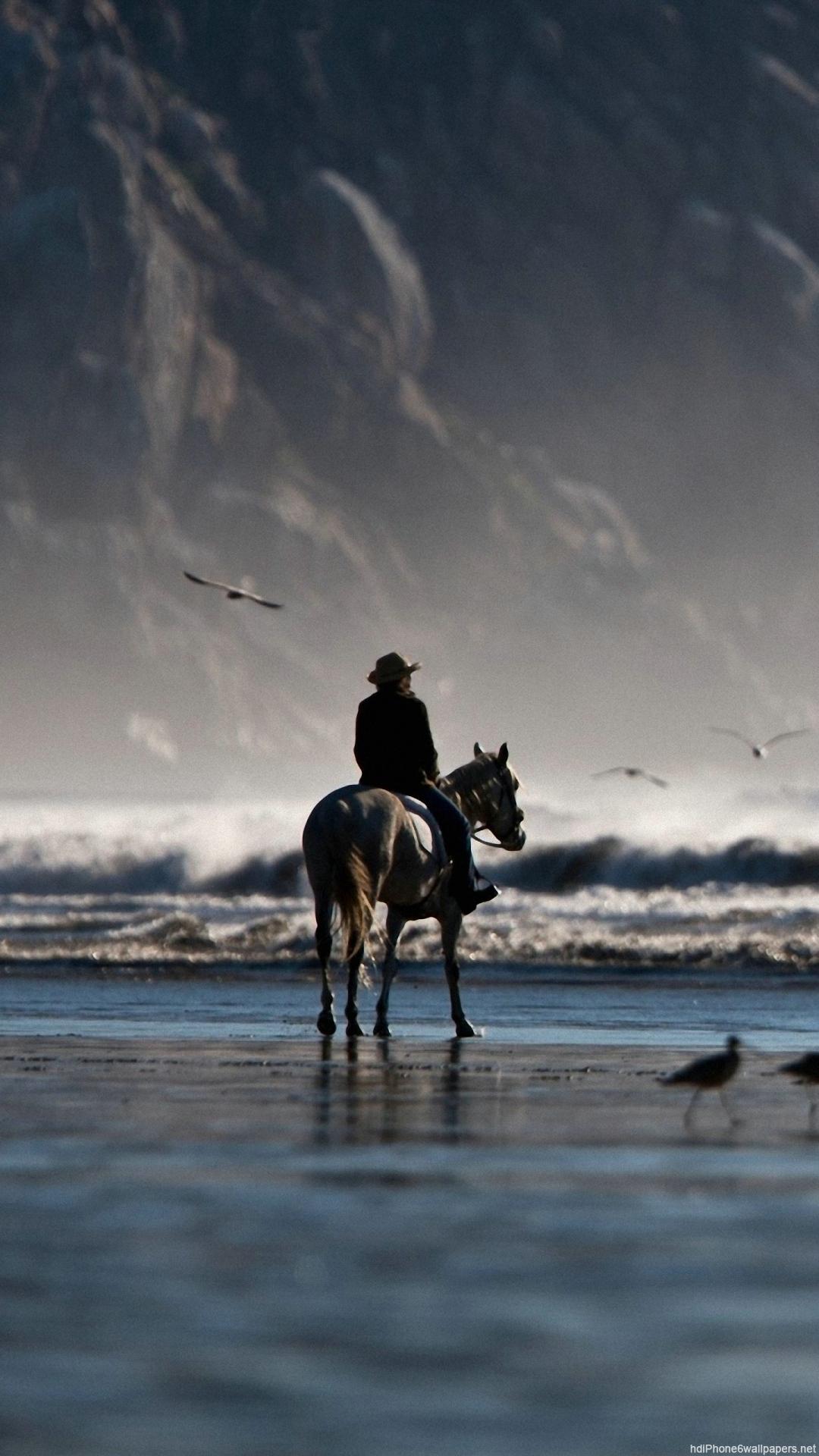 Cool Horse Wallpapers for iPhone - WallpaperSafari