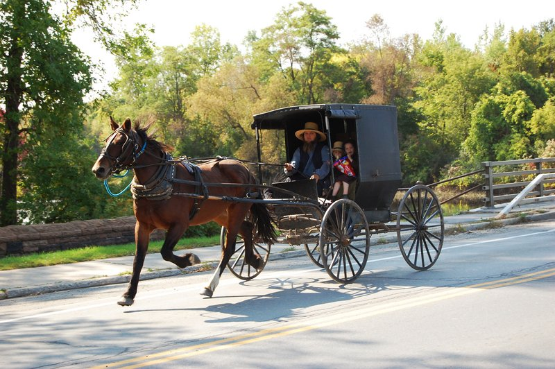 Search Results for Amish Horse And Buggy Wallpapers 800x532