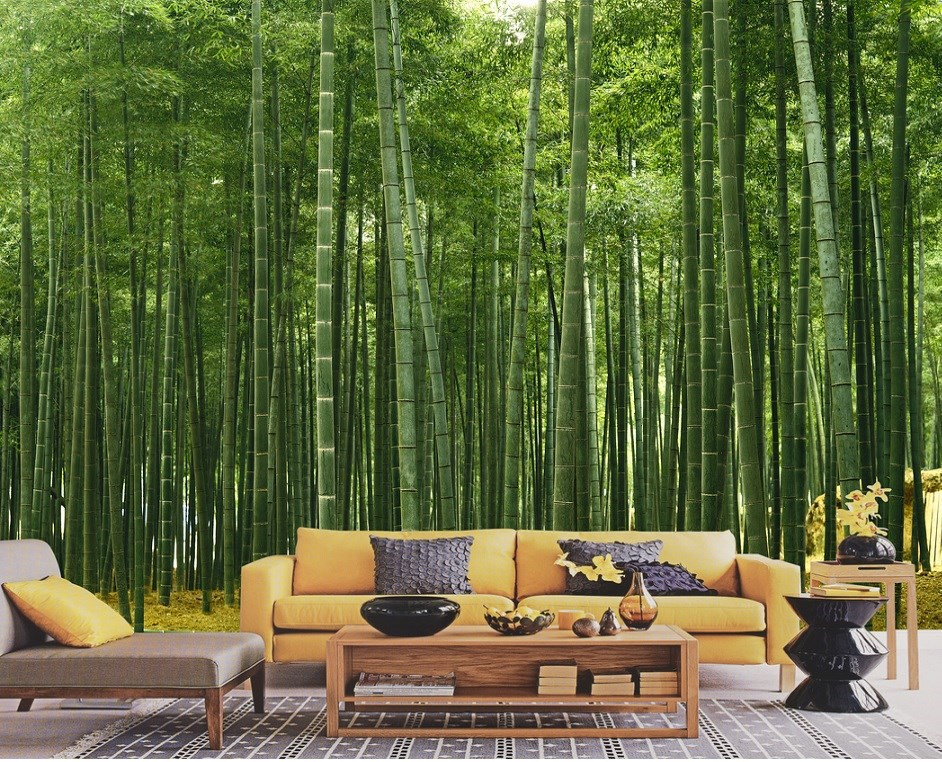 wallpapers Bamboo scenery of wallpapers Living Room of wall murals 942x762