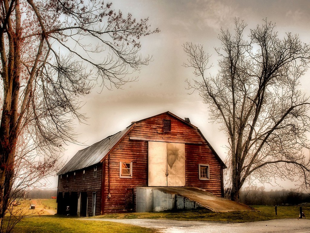 Country Wallpaper 1024x768