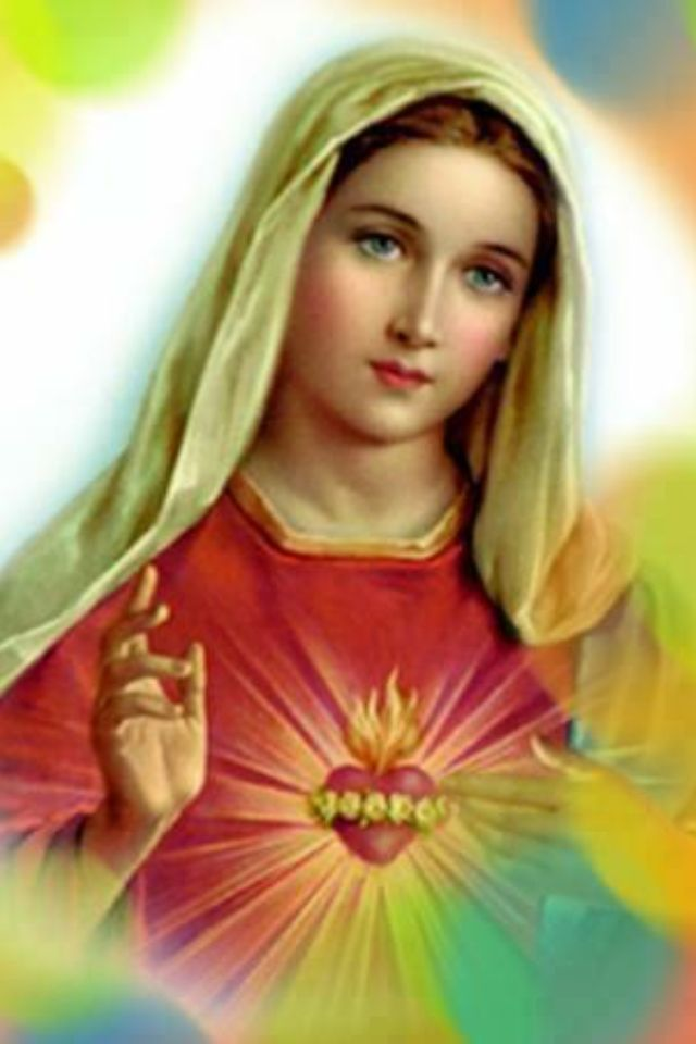 Blessed Virgin Mary and her most Immaculate Heart 640x960
