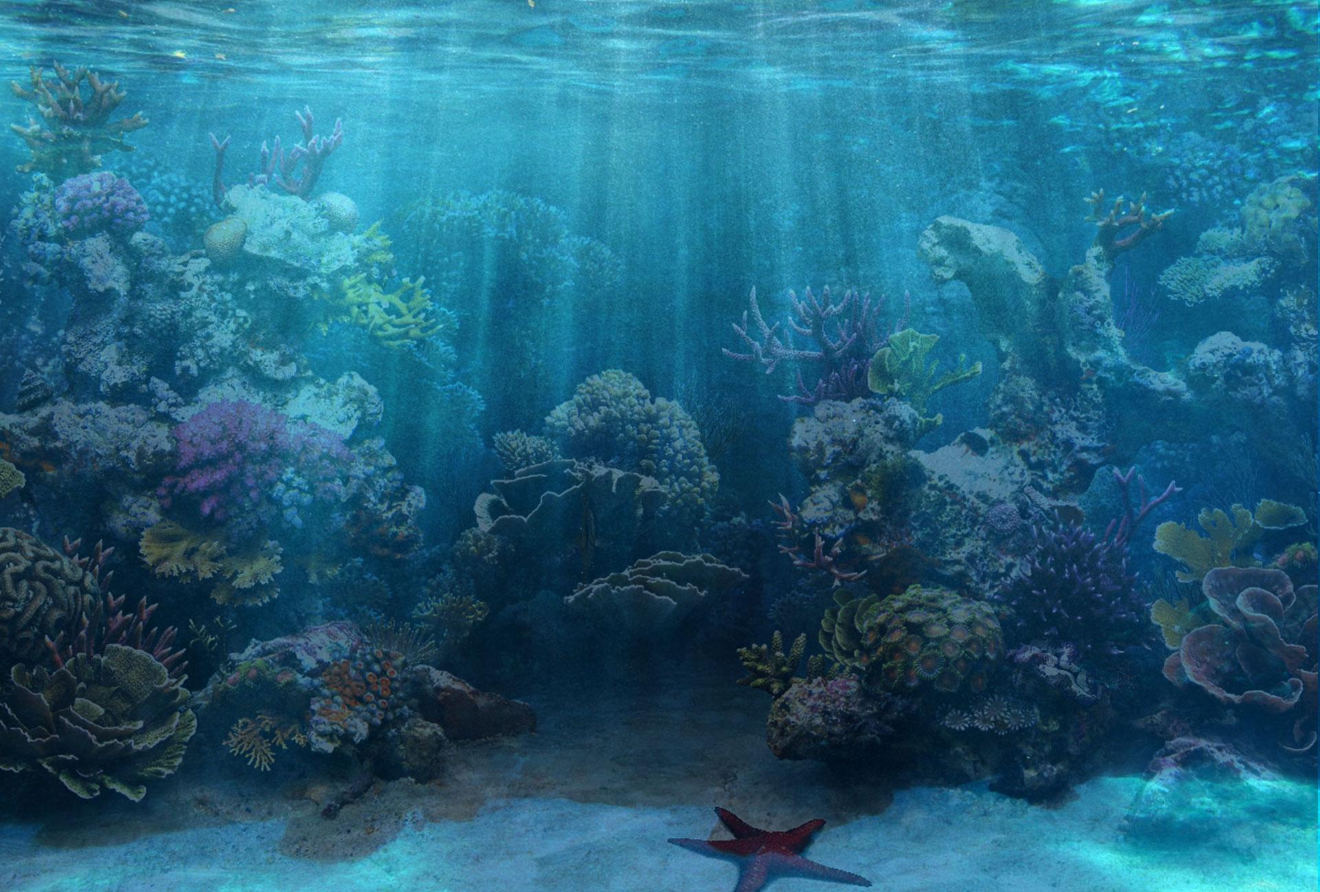 Saltwater aquarium wallpaper wallpapersafari for Reef fish tank