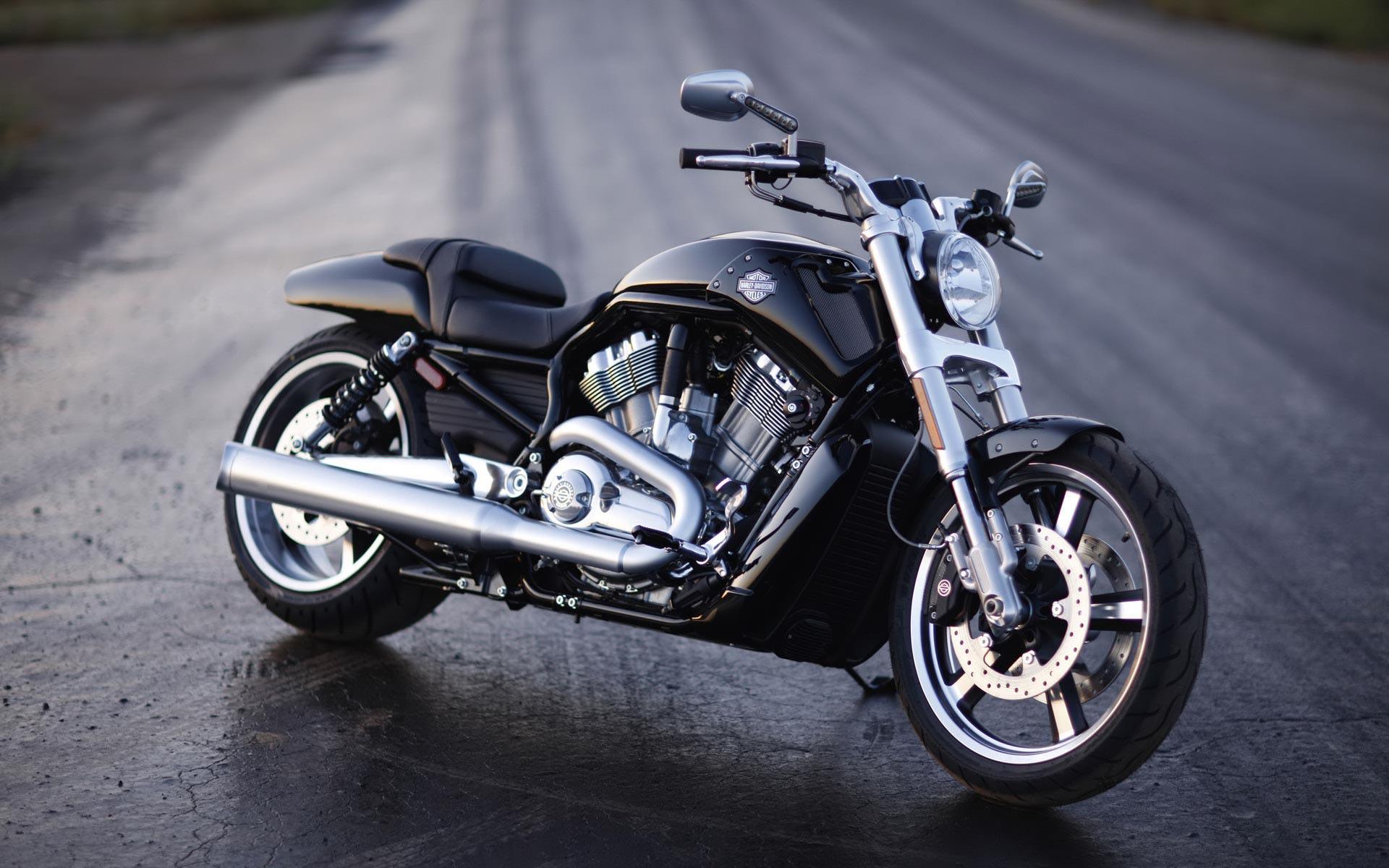 Desktop backgrounds Motors Bikes Harley Davidson motorcycle 1920x1200