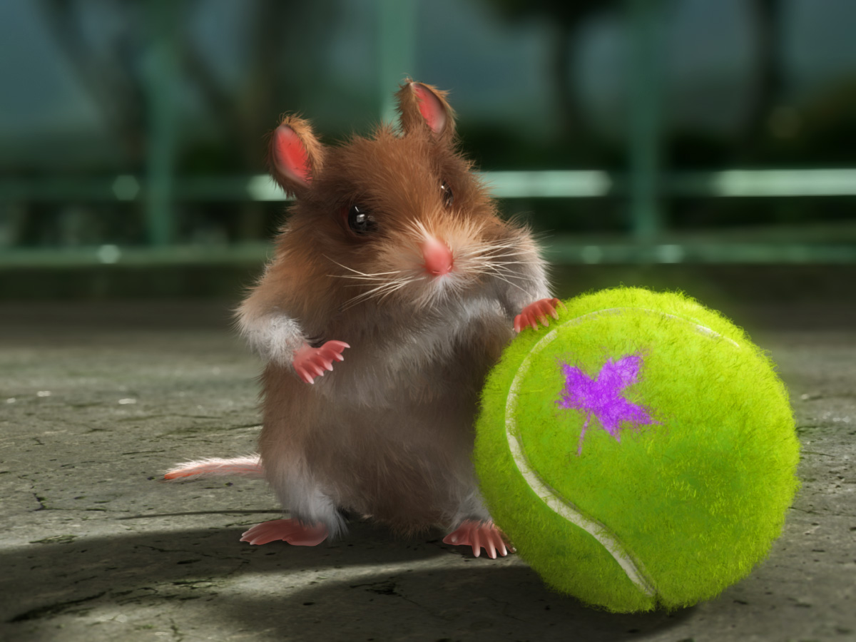 Download wallpapers hamster Wallpaperbooknet 1200x900