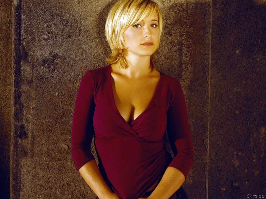 Allison Mack desktop wallpaper download in widescreen 1024x768