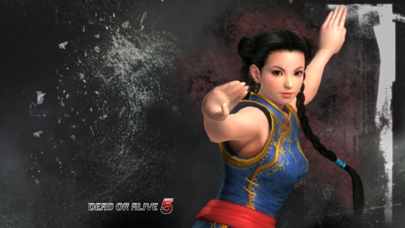 Rendered Bits Fanmade Dead or Alive 5 Game Wallpaper 1600x900