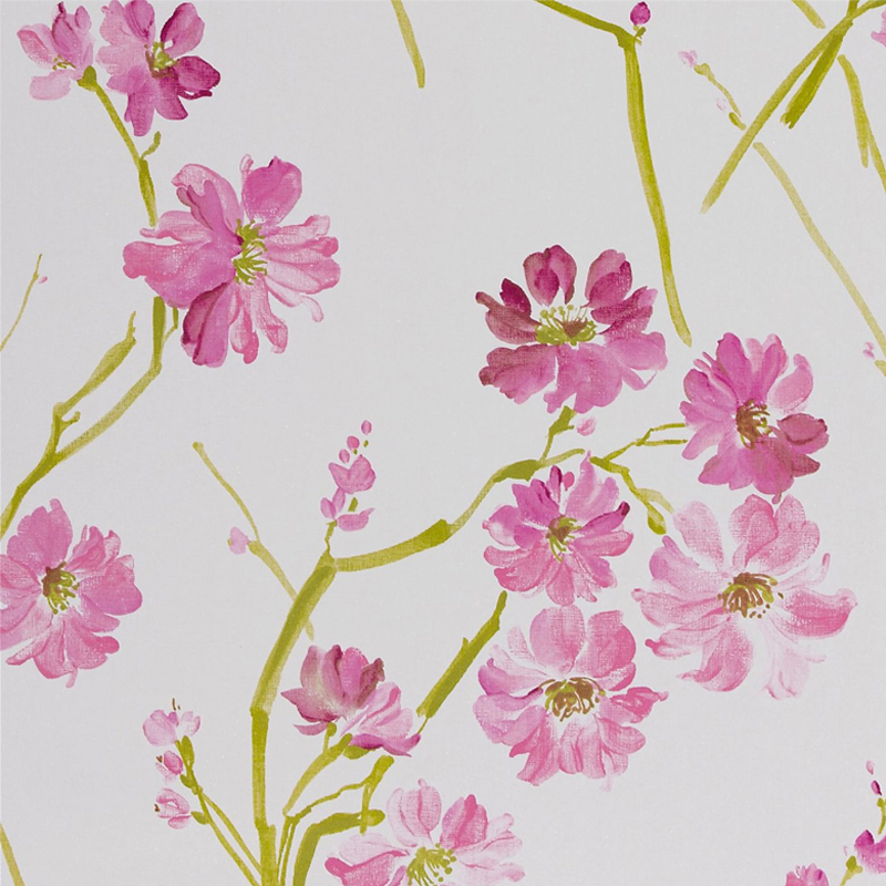 online shop FLORIS 30215 Nature designs Harlequin Wallpapers 800x800