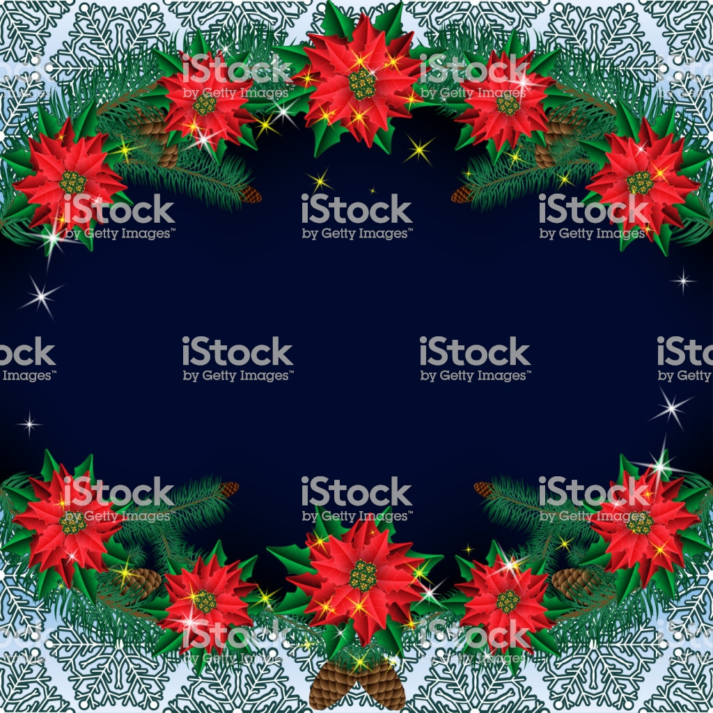 Christmas Poinsettia Flowers Background With Pine Branches On A 1024x1024