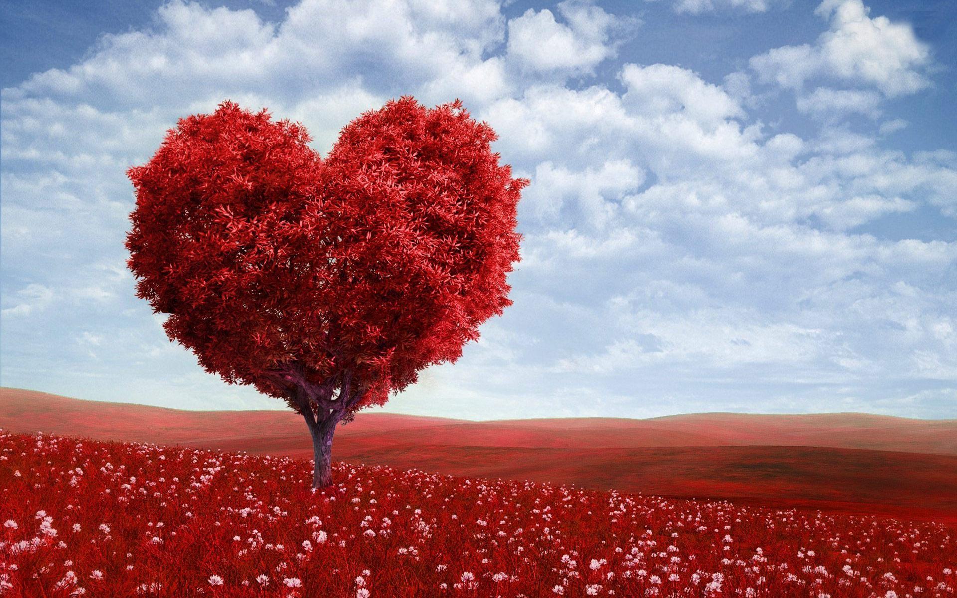Valentine Love Tree Computer Desktop Wallpaper 1920x1200