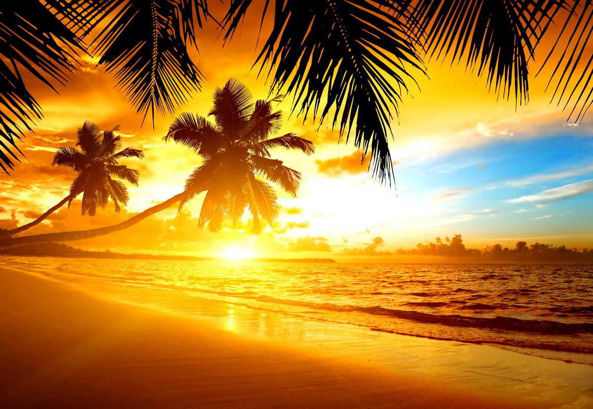 Tropical Island Sunset: [47+] Tropical Sunset Wallpaper Desktop On WallpaperSafari
