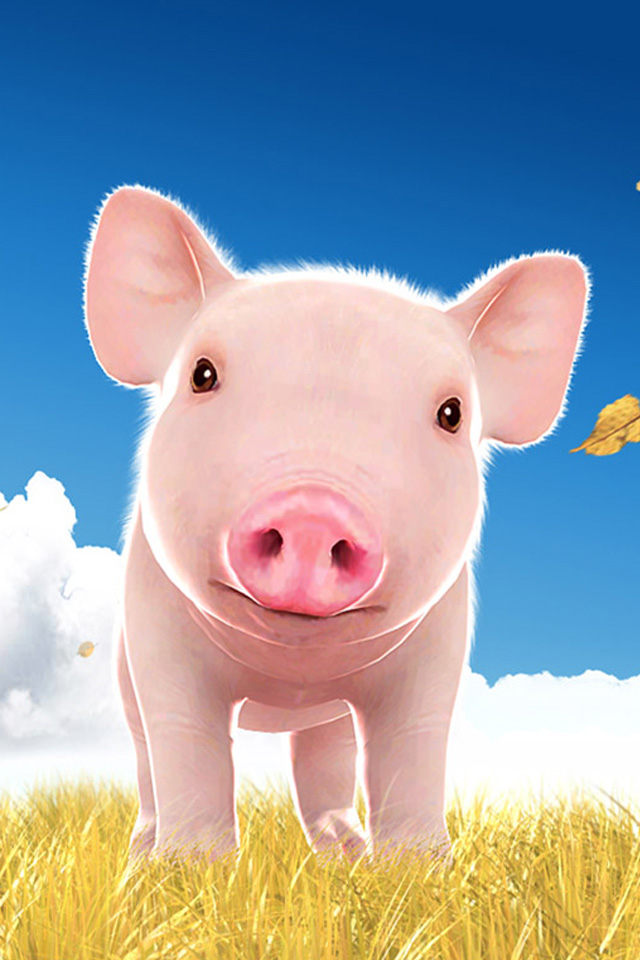 Cute pig iPhone wallpaper iPhone 4 wallpaper iPod Touch HD 640x960