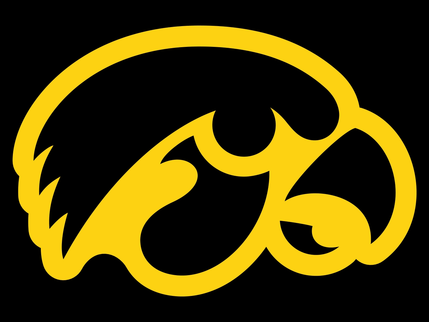 Free Iowa Hawkeyes Wallpaper - WallpaperSafari