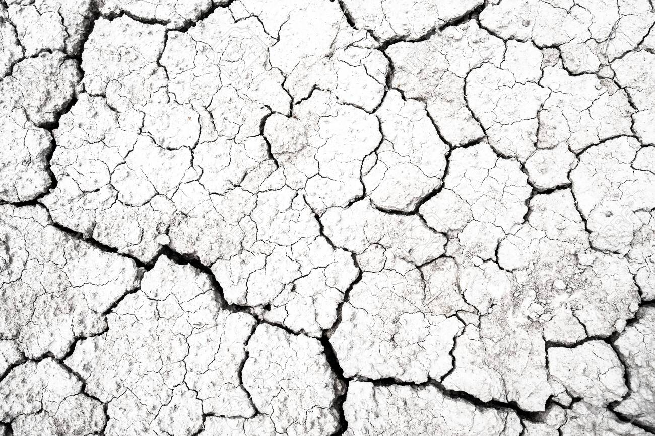 Dried And Cracked Desert Ground Texture Dry Earth Background Stock 1300x867