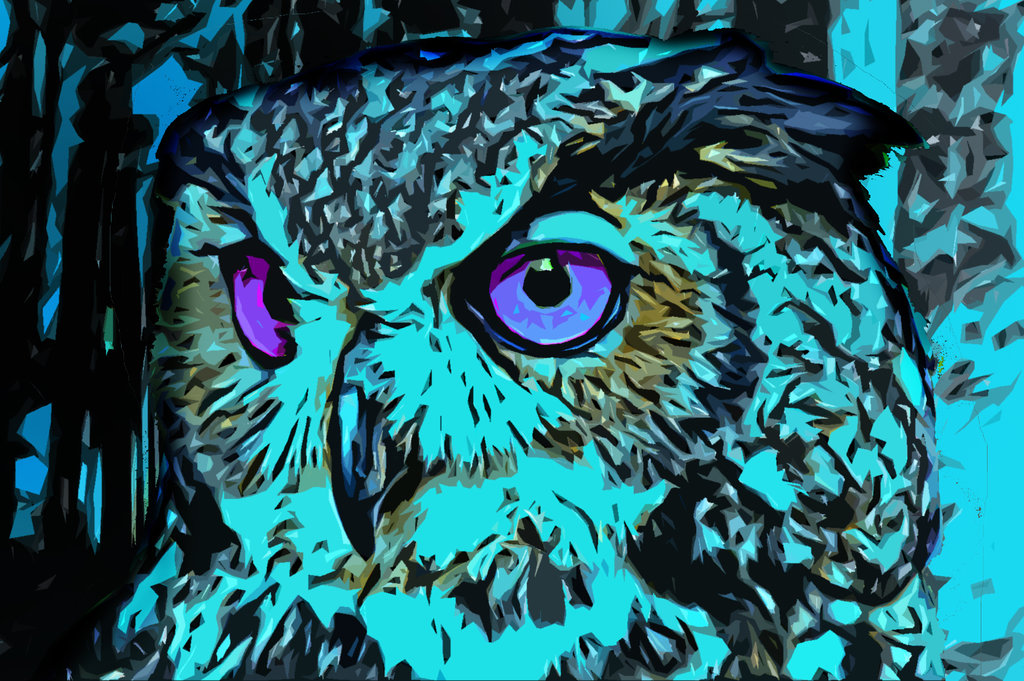 Abstract Owl Wallpaper I Made fc08deviantartnet 1024x681