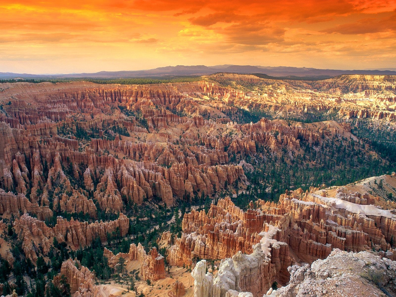 Bryce Canyon National Park wallpapers Earth HQ Bryce Canyon 1600x1200