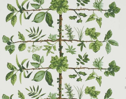 Interior Wallpaper Trends For 2016   The Ace Of Space Blog 534x418