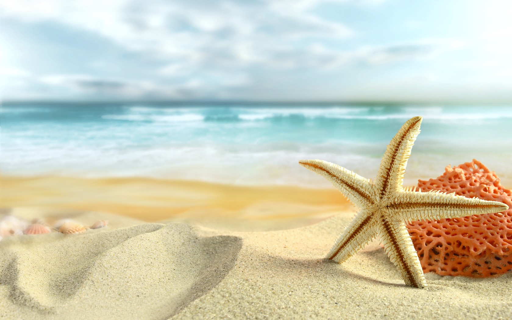 Ocean sand stars starfish sea beaches wallpaper 1680x1050 184243 1680x1050