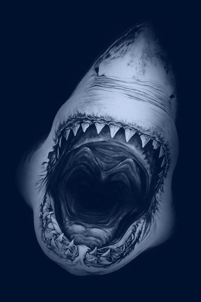 640x960 Great White Shark Iphone 4 wallpaper 640x960