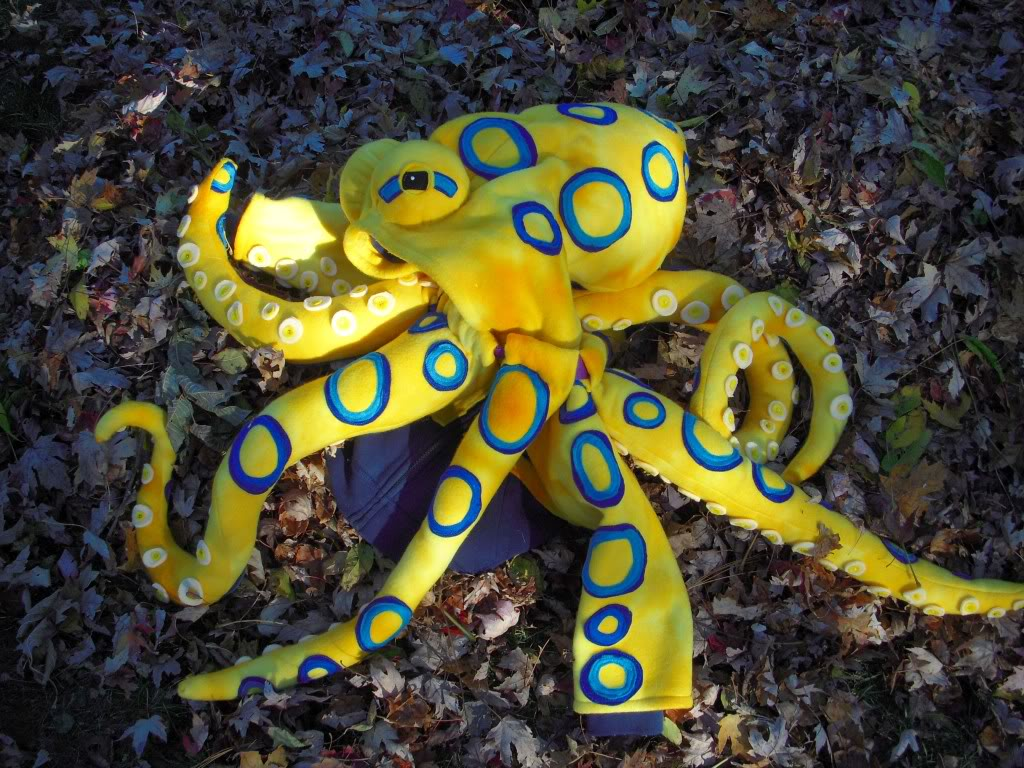 Perth children find blueringed octopus in a tennis ball