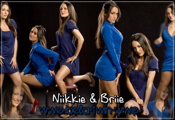 wwe diva bella twins sexy
