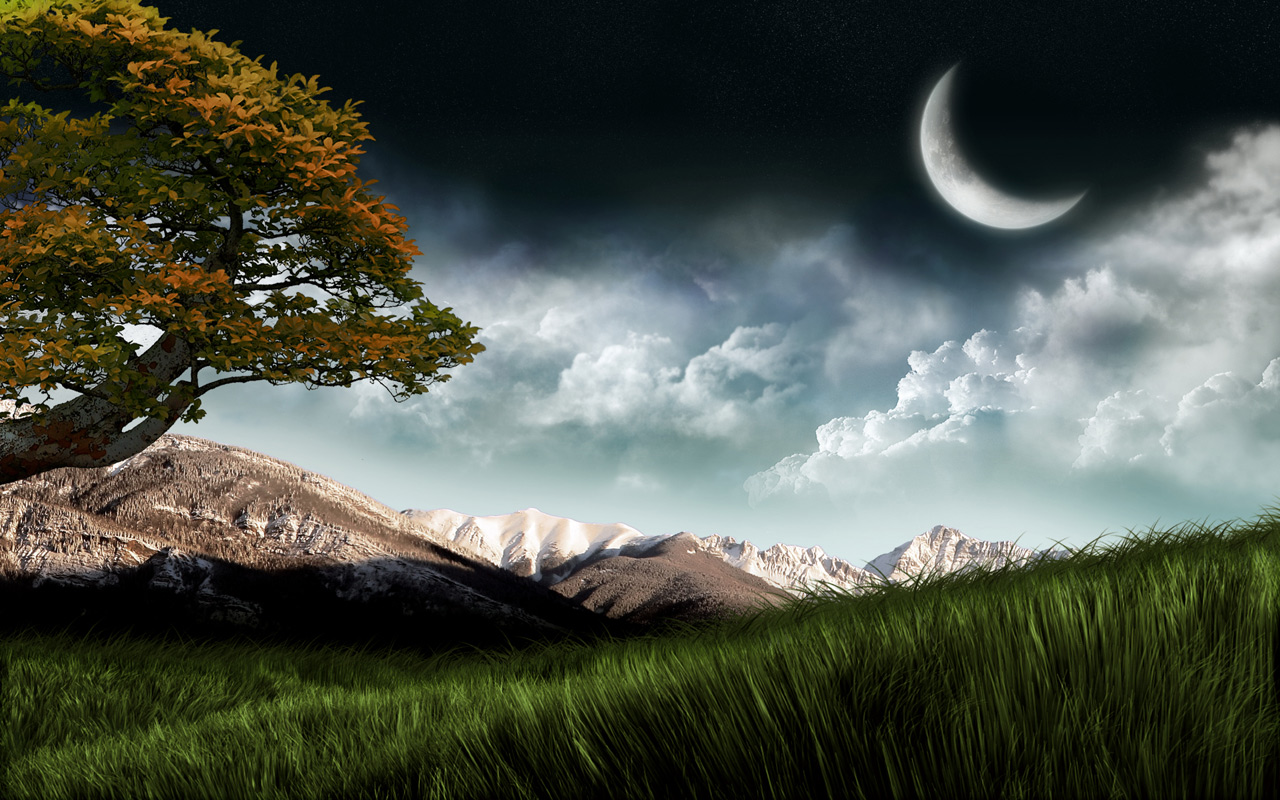 Labels 3D Wallpapers Backgrounds Nature Wallpapers 1280x800