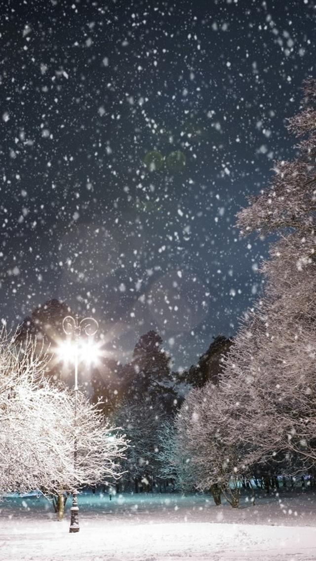 Winter Scenery iphone 5 wallpapers downloads 640x1136
