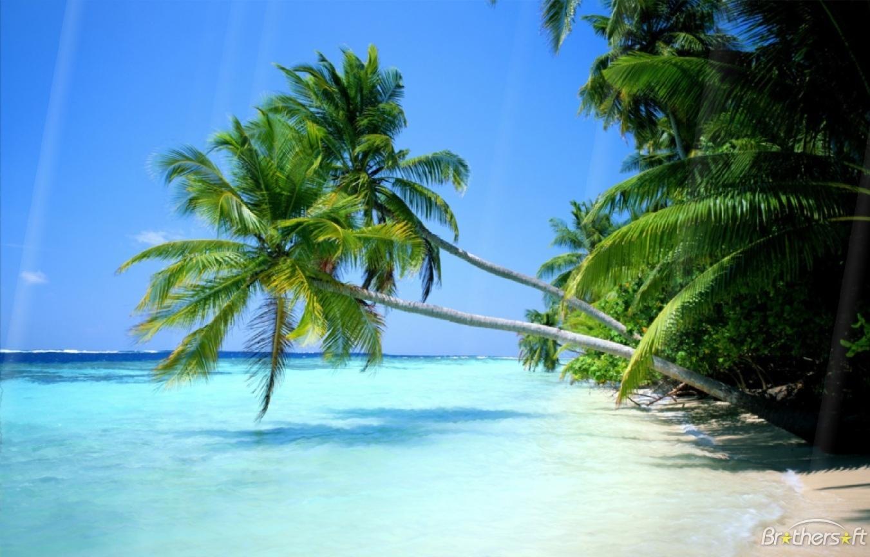 Summer Beach Screensaver Summer Beach Screensaver 10 Download 1351x864