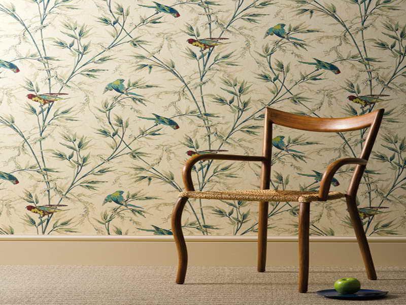 Bird Wallpaper For Walls Decor Best Birds Wallpaper For Walls 800x600